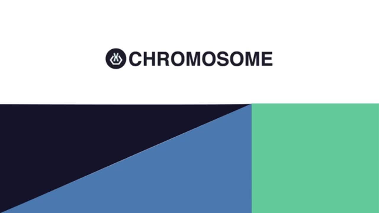 Proyecto Chromosome