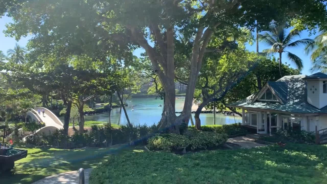 Walking along Hilton Waikoloa Village gardens