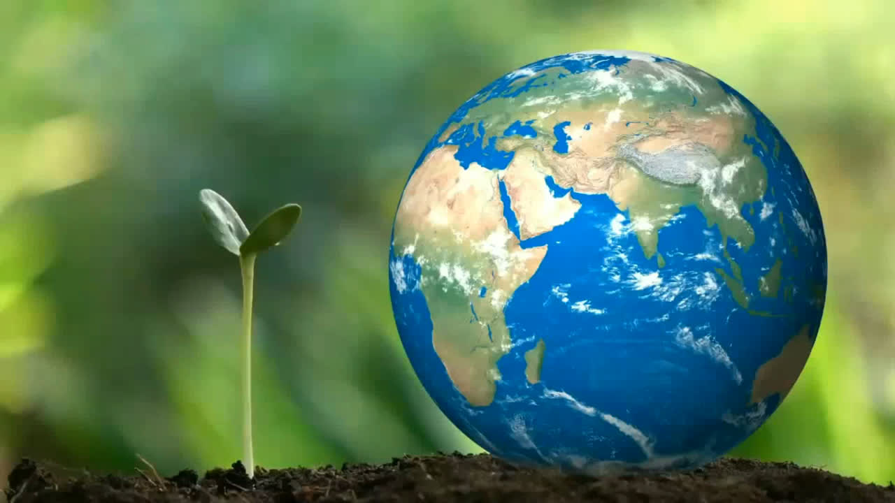 The nature of the planet Earth